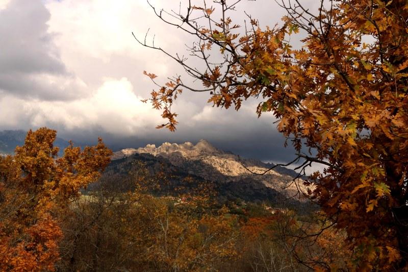 El otoño con La Pedriza de fondo.